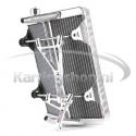 Radiateur New-Line RSV BIG 430 x 295 x 40mm cpl. met steun