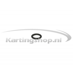 Iame X30 O-ring cilinderkop-tapend