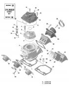 Cilinder EVO Rotax Max