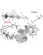 E-Rave EVO Rotax Max